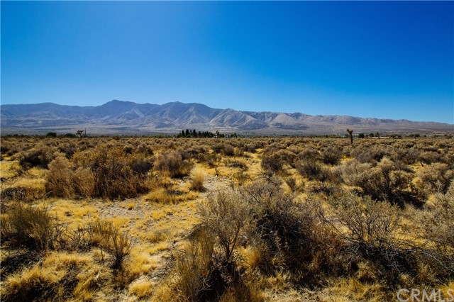 0 Akron, Lucerne Valley, CA  Photo 4