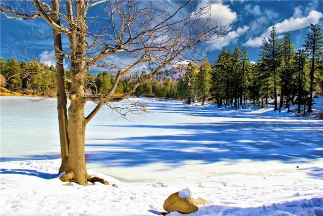 33294 Iris Dr, Green Valley Lake, CA 92341 Photo 19