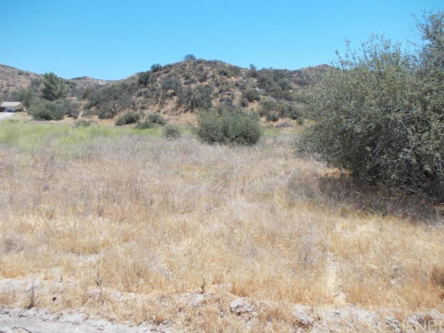 0 Baker Canyon Rd, Canyon Country, CA 91351