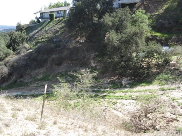 12001 Kagel Canyon Rd, Kagel Canyon, CA 91342 Photo 11