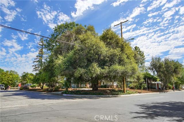 8900 Enfield Av, Sherwood Forest, CA 91325 Photo 1