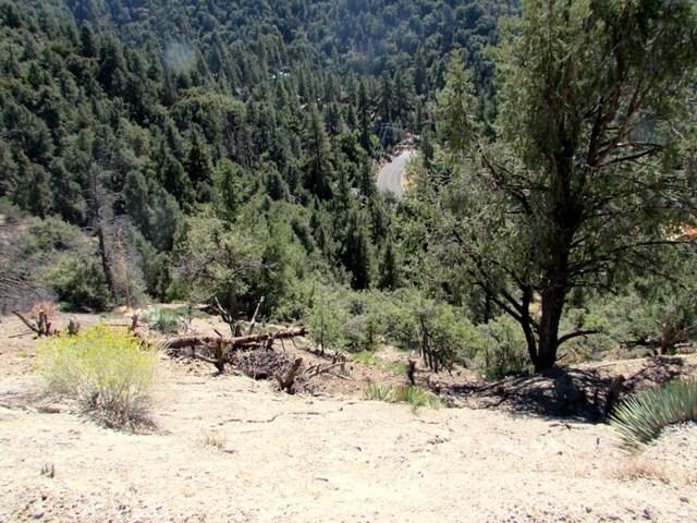 1725 Saint Anton Dr, Pine Mtn Club, CA 93222 Photo 9