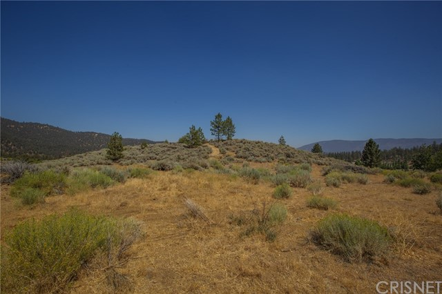 1 Hilltop, Frazier Park, CA  Photo 0