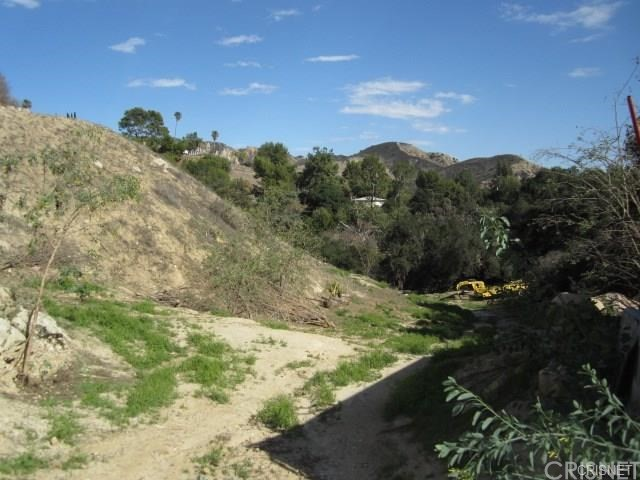 12001 Kagel Canyon Rd, Kagel Canyon, CA 91342 Photo 8