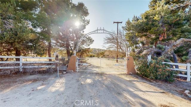 10141 E Avenue W14, Littlerock, CA 93543 Photo