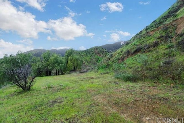 13812 N Mesa Alta Rd, Kagel Canyon, CA 91342 Photo 5