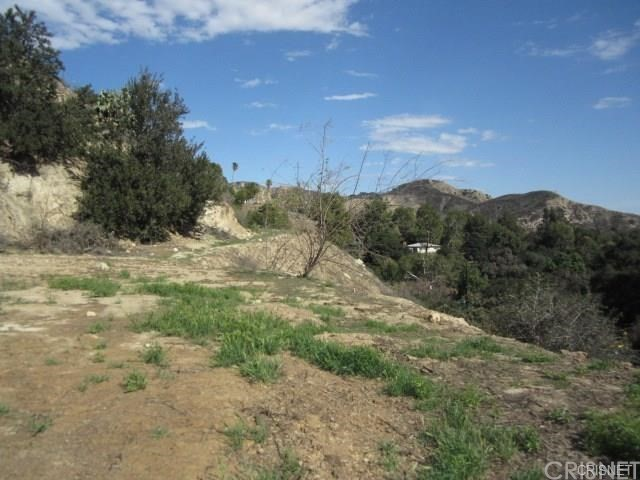 12001 Kagel Canyon Rd, Kagel Canyon, CA 91342 Photo 9