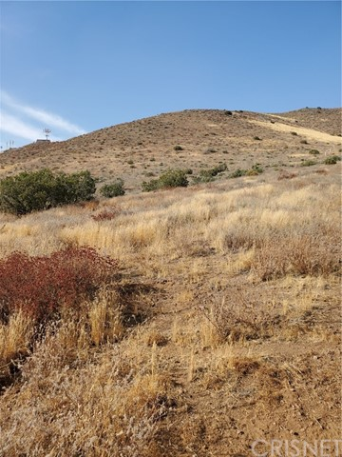0 Vac/Vic Hypotenuse/Sierra, Acton, CA 93510 Photo 11