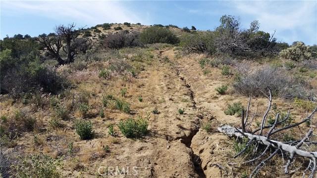 0 Juniper Ridge Ln, Acton, CA 91350 Photo 4