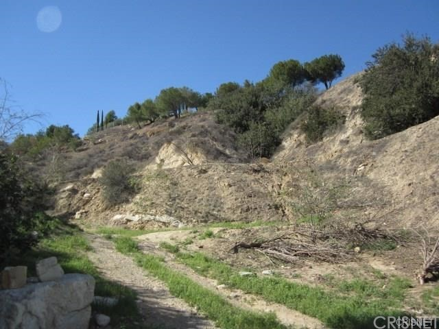 12001 Kagel Canyon Rd, Kagel Canyon, CA 91342 Photo 6