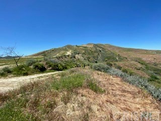 31010 San Martinez Rd, Val Verde, CA 91384 Photo 16