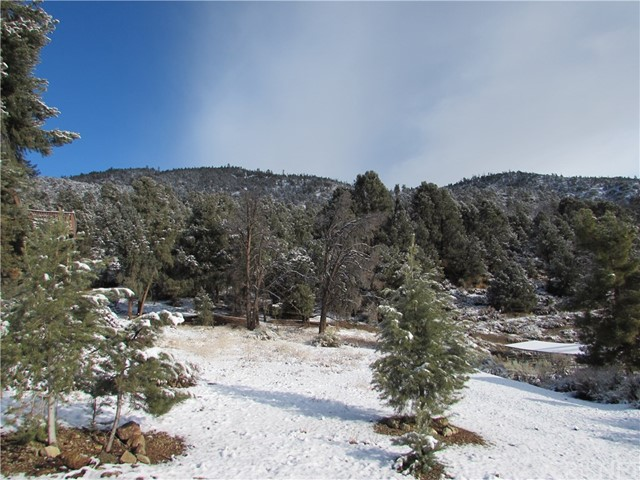 16401 Grizzly, Pine Mtn Club, CA 93222 Photo 16