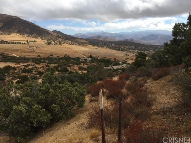 0 Vac/Vic Clayvale St/Larchfork Rd, Acton, CA 93510 Photo 0