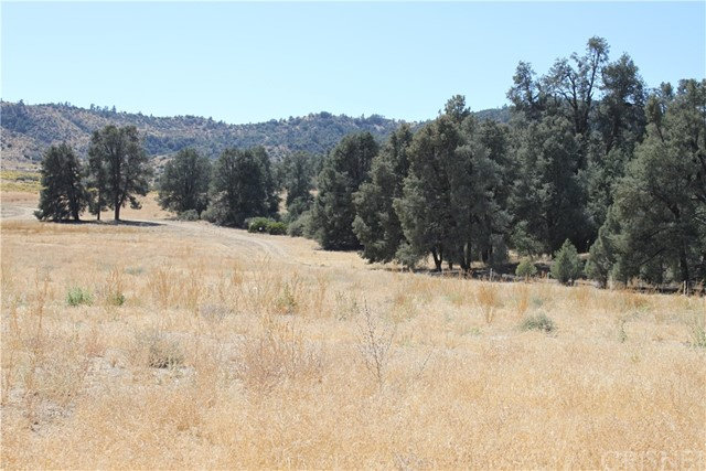 13224 Boy Scout Camp Rd, Frazier Park, CA 93225 Photo 10