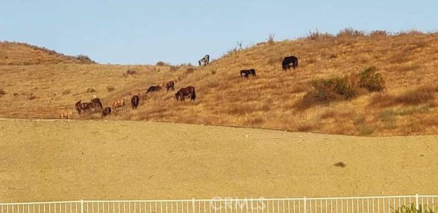 30015 Valley Glen St, Castaic, CA 91384 Photo 30