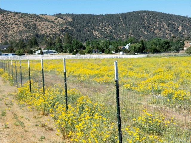 1 Steinhoff Rd, Frazier Park, CA 93225 Photo 6