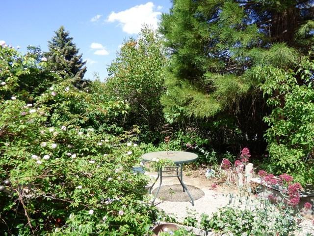 9020 Deer, Frazier Park, CA 93225 Photo 48