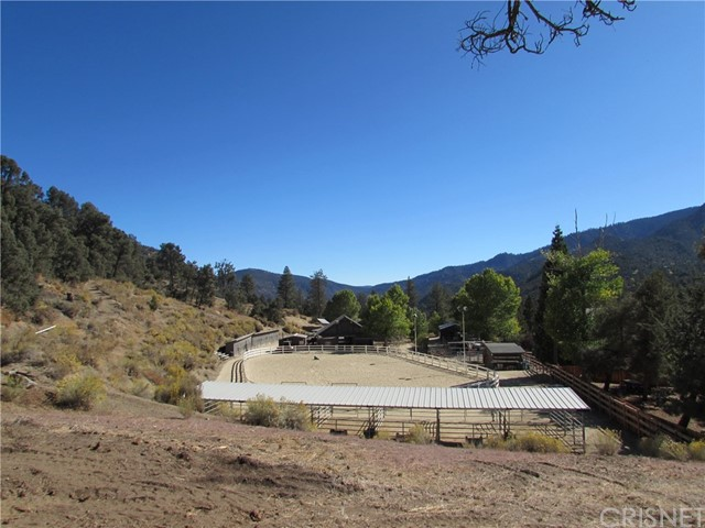 16401 Grizzly, Pine Mtn Club, CA 93222 Photo 9