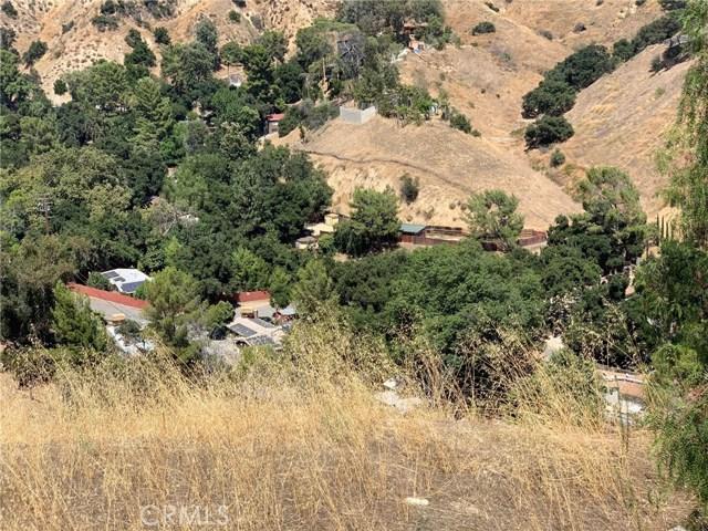 11315 Overlook Tr, Kagel Canyon, CA 91342 Photo 3