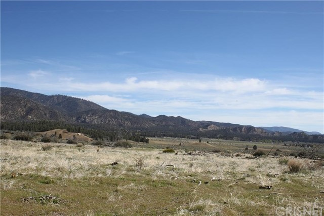 133 Boy Scout Camp, Frazier Park, CA 93225 Photo 5