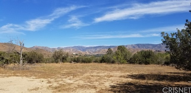 33062 Crown Valley Rd, Acton, CA 93510 Photo 5