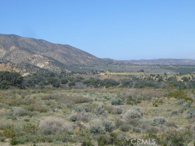 0 Vac/Pine Rock Rd/Vic Big Sky Drive, Juniper Hills, CA 93543