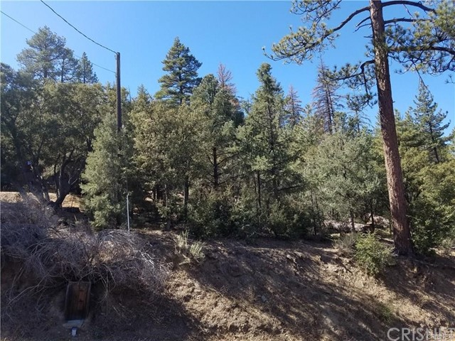 1513 Zermatt Drive, Pine Mtn Club, CA 93222
