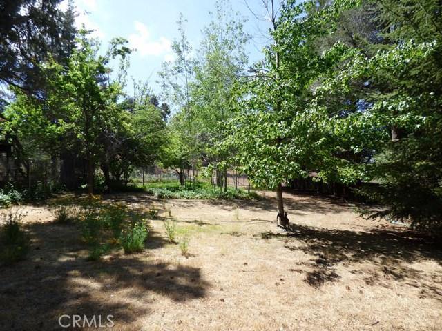 9020 Deer, Frazier Park, CA 93225 Photo 39