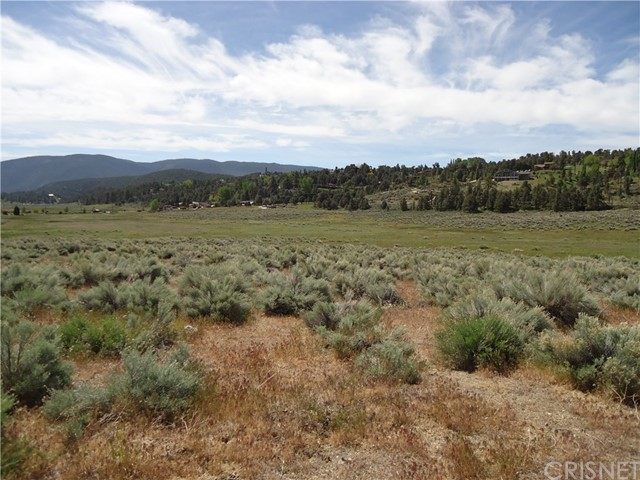0 Cuddy Valley Road, Frazier Park, CA 93225 Photo 11
