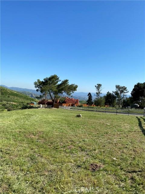13910 Kagel Canyon Rd, Kagel Canyon, CA 91342 Photo 1