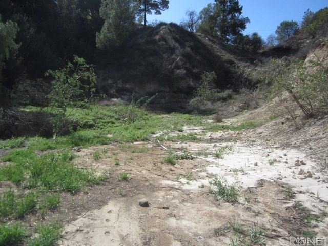 12001 Kagel Canyon Rd, Kagel Canyon, CA 91342 Photo 13