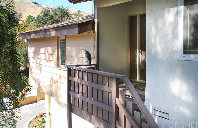 12234 Spring Tr, Kagel Canyon, CA 91342 Photo 13