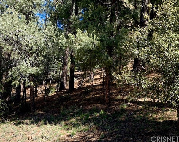 2000 Ironwood Drive, Pine Mtn Club, CA 93222