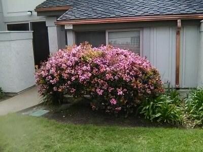 3131 Harbor Boulevard, Oxnard, CA 93035