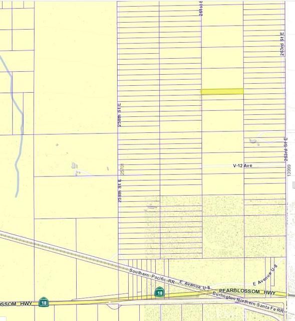 26100 Vac/Vic Avenue V6/258 Ste, Llano, CA 93544
