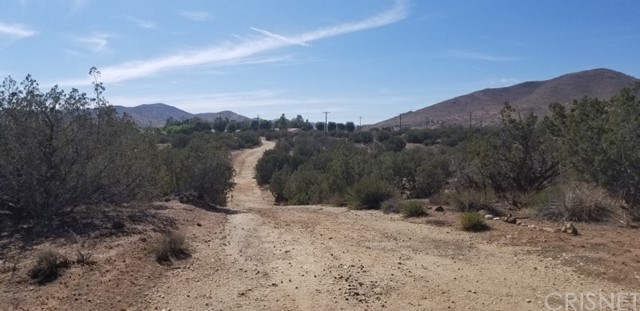 33062 Crown Valley Rd, Acton, CA 93510 Photo 4