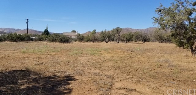 33062 Crown Valley Rd, Acton, CA 93510 Photo 10