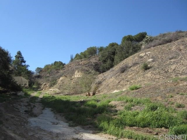 12001 Kagel Canyon Rd, Kagel Canyon, CA 91342 Photo 4