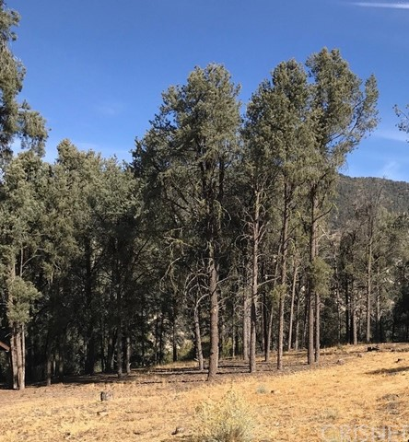 13913 Yellowstone Drive, Pine Mtn Club, CA 93225