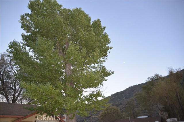 4520 Ivy Tr, Frazier Park, CA 93225 Photo 12