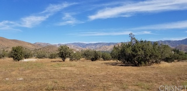 33062 Crown Valley Rd, Acton, CA 93510 Photo 14