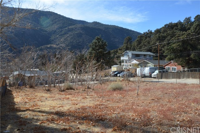 4244 Spruce Tr, Frazier Park, CA 93225 Photo 5