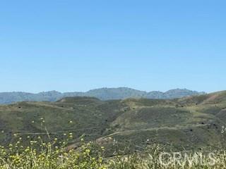 31010 San Martinez Rd, Val Verde, CA 91384 Photo 17