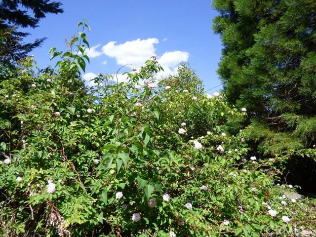 9020 Deer, Frazier Park, CA 93225 Photo 52