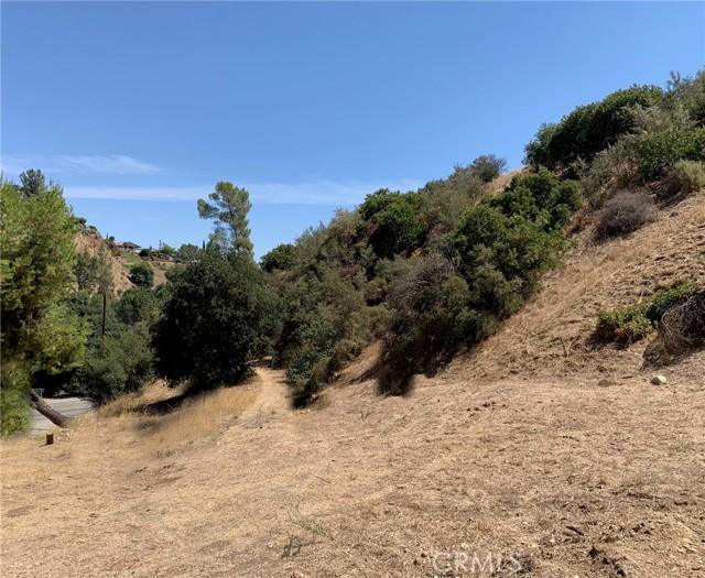 12105 Wildwood Tr, Kagel Canyon, CA 91242 Photo 1