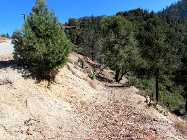 1725 Saint Anton Dr, Pine Mtn Club, CA 93222 Photo 11