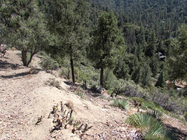 1725 Saint Anton Dr, Pine Mtn Club, CA 93222 Photo 12