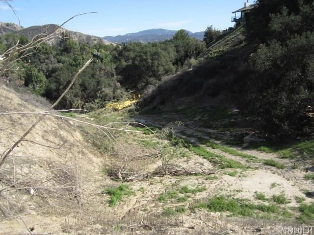 12001 Kagel Canyon Rd, Kagel Canyon, CA 91342 Photo 10