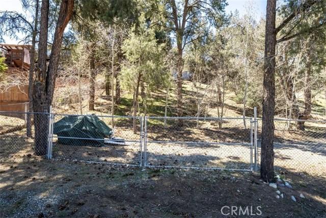 1110 Snowline Dr, Frazier Park, CA 93225 Photo 44
