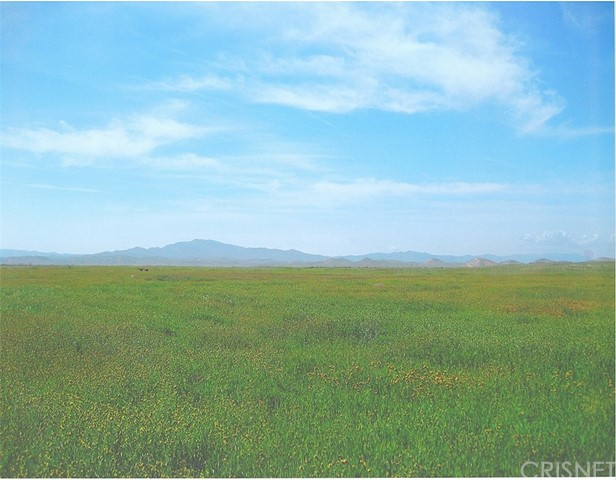 0 Farm Land, Lost Hills, CA 93249